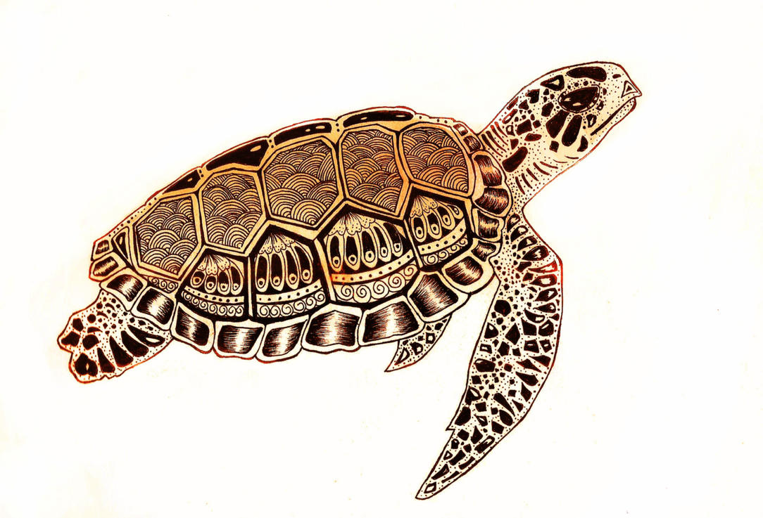 Image Result For Turtle Tattoos