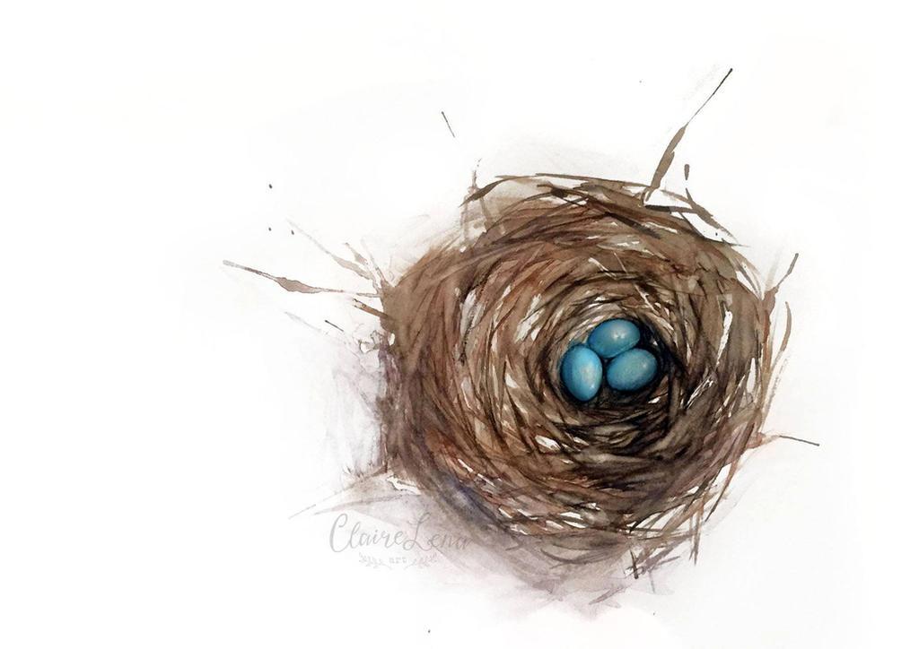 Robin Nest by meirou