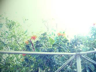 belle g floral by 2d3x