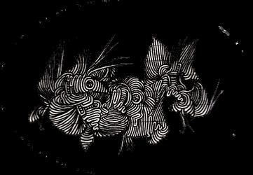 Darkness Fish by WhiteBoneDemon
