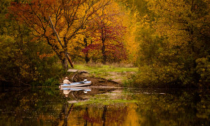 .. fall on the island .. by mixarenart
