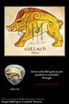 Boar - Celtic Animals