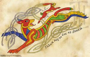 Cu agus Giorria by Illahie