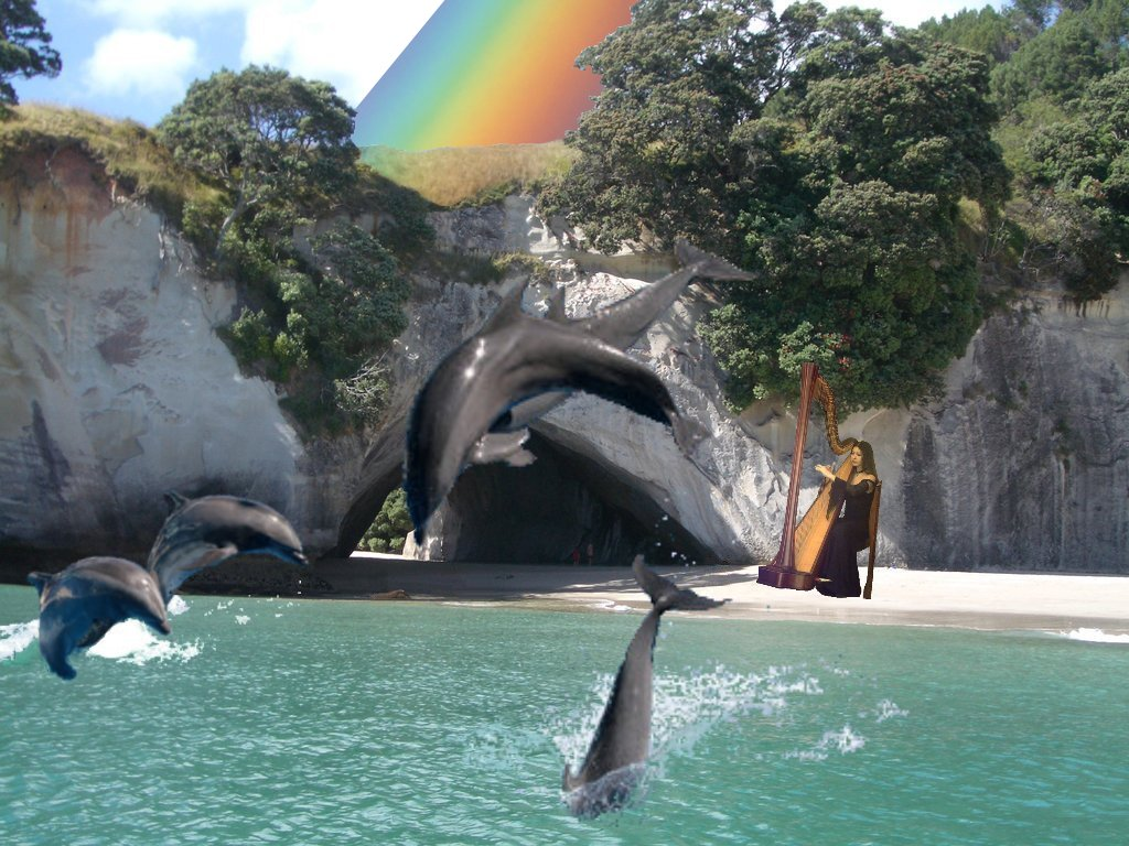 Playing music for the dolphins