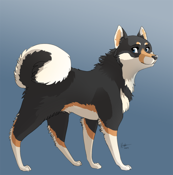 Popular Shiba Inu Anime Adorable Dog - shiba_inu_by_hoykellay  You Should Have_684489  .png