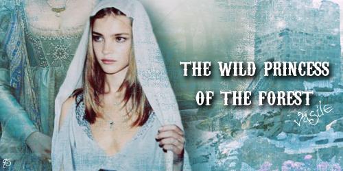 Wild Princess by lostinafantasy2