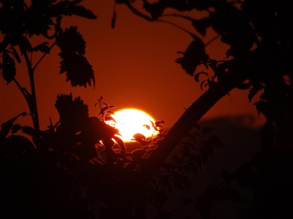 One good morning. by ramonabadea