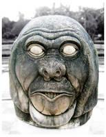 Monkey Head by astayoga