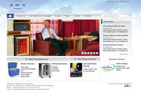 Emsindo (ems Group of Companies) Web Redevelopment