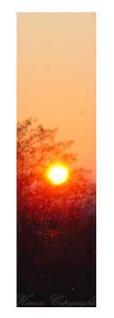 Sunrise I - Bookmark