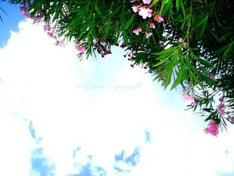 Sky One by Kiwxi