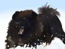 Snow lion by Avibroso
