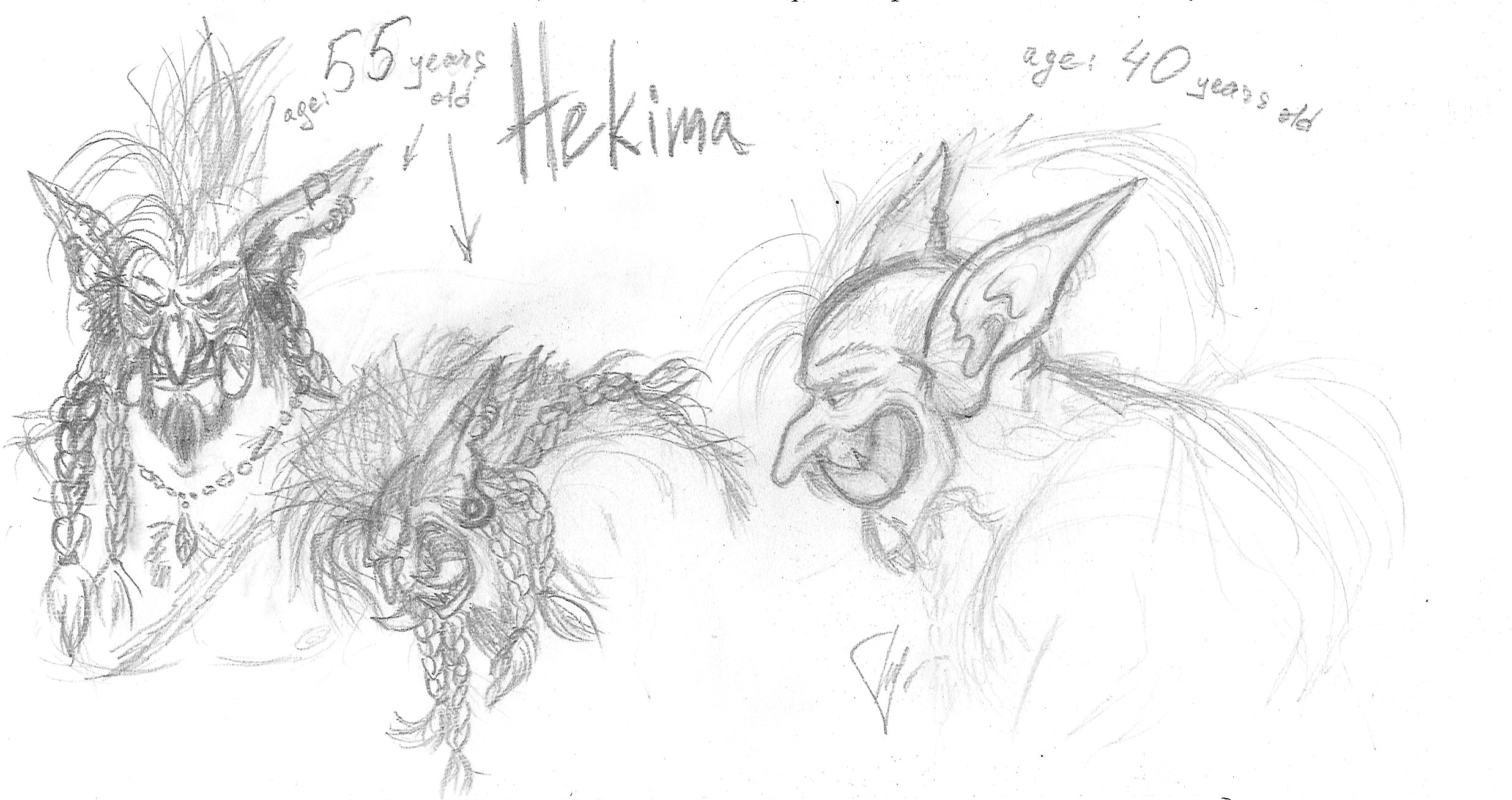 Hekima: sketch of ears and 55 years old by Flive-aka-Nailan