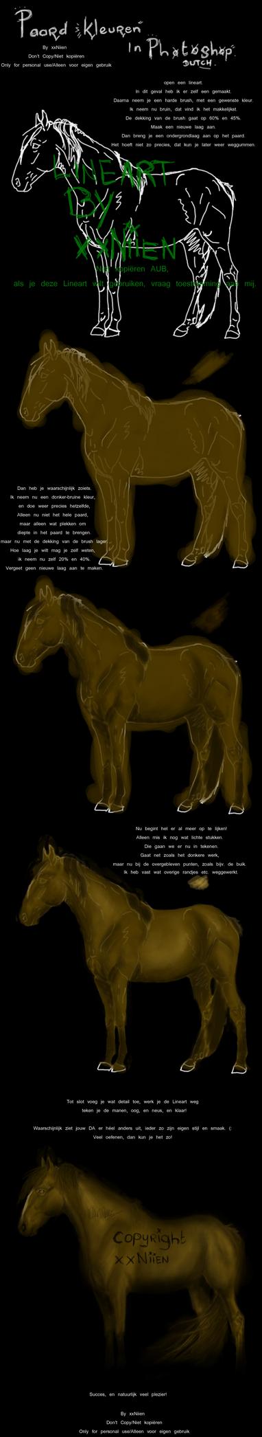How to draw a horse - DUTCH by xxNiien
