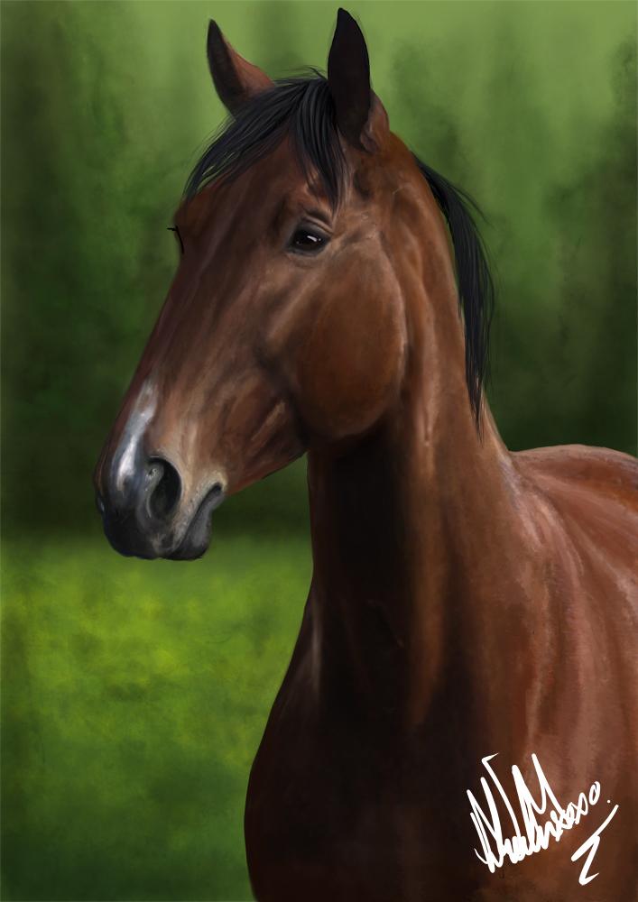 Digital art - Brown horse by xxNiien