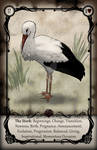UTRL - The Stork