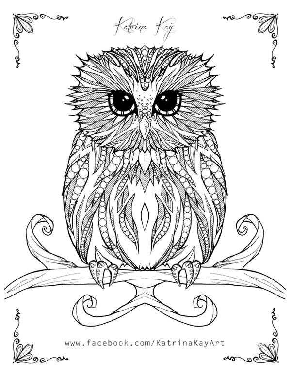 Adult Coloring Book Page - Owl