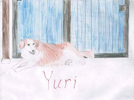 Drawing of Yuri