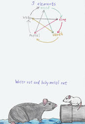 Chinese Zodiac Water and Metal Rats