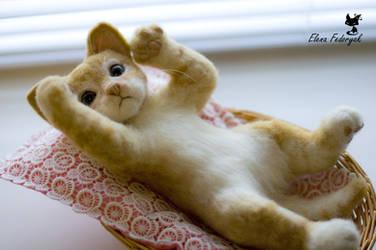 Little kitten 'Rudy' by KittenBlackUA