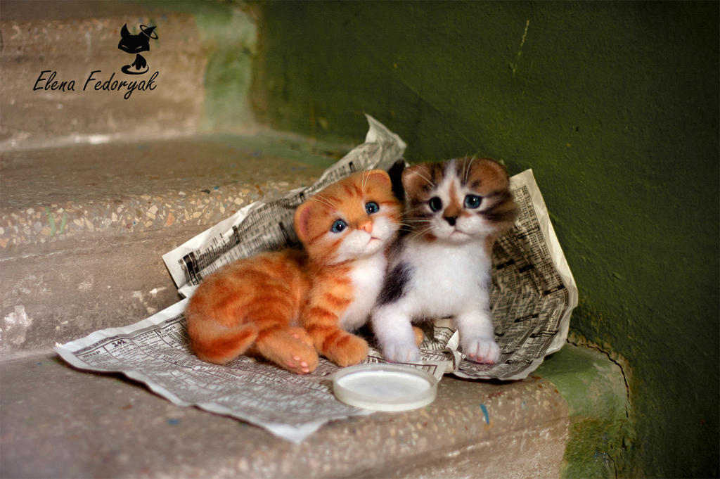little homeless kittens by kittenblackua on deviantart