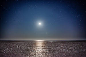 Midnight Sun by saeppo