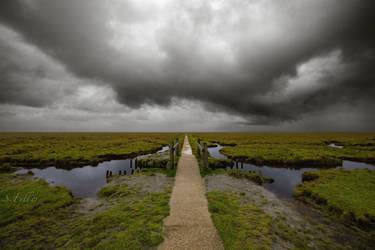 a long path