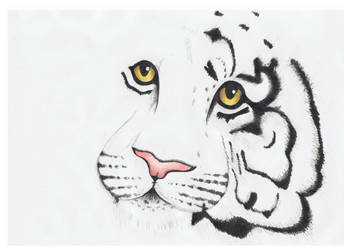 unfinished tiger by 6Ginger9
