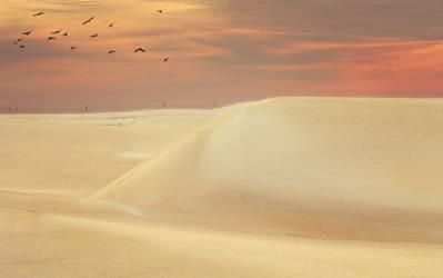 Sand by amai911