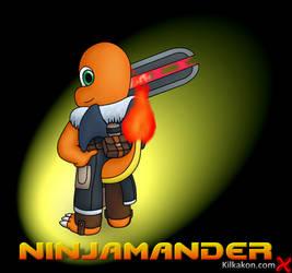 Ninjamander by KilkakonOfficial