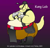 Kung Lab by Tolstoy