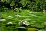 emerald current