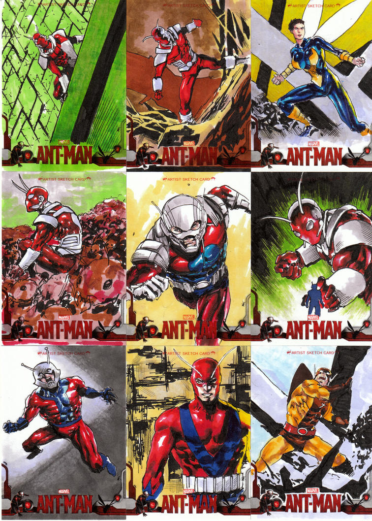 Ant Man Sketchcard by orphanshadow