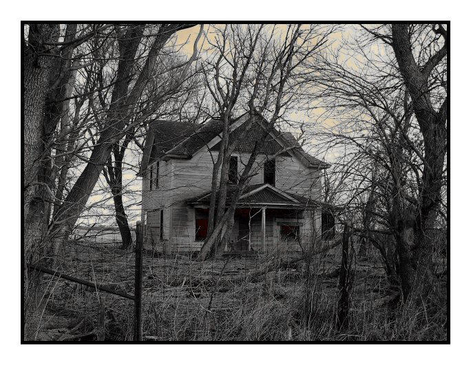 Old houses on pinterest haunted houses creepy houses for Classic house 2004