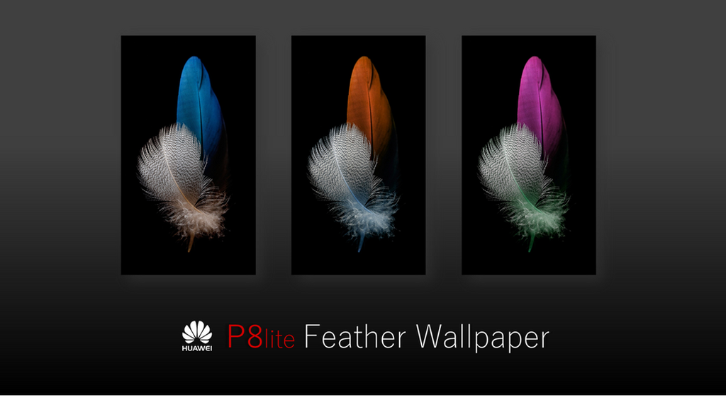 Huawei P8 lite Feather Wallpapers by f79h