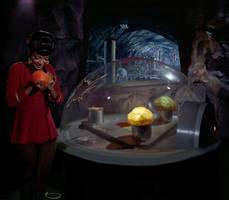 Uhura's Revenge