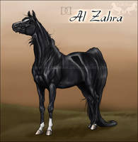 DD Al Zahra by Hazel-rah