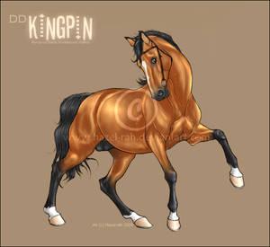 DD Kingpin