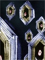 Hexagons avatar