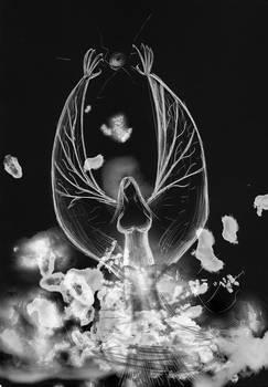 Black Fiendish Angel from the smoke -WIP-