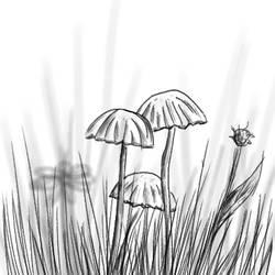 Mushrooms by DnKrow7