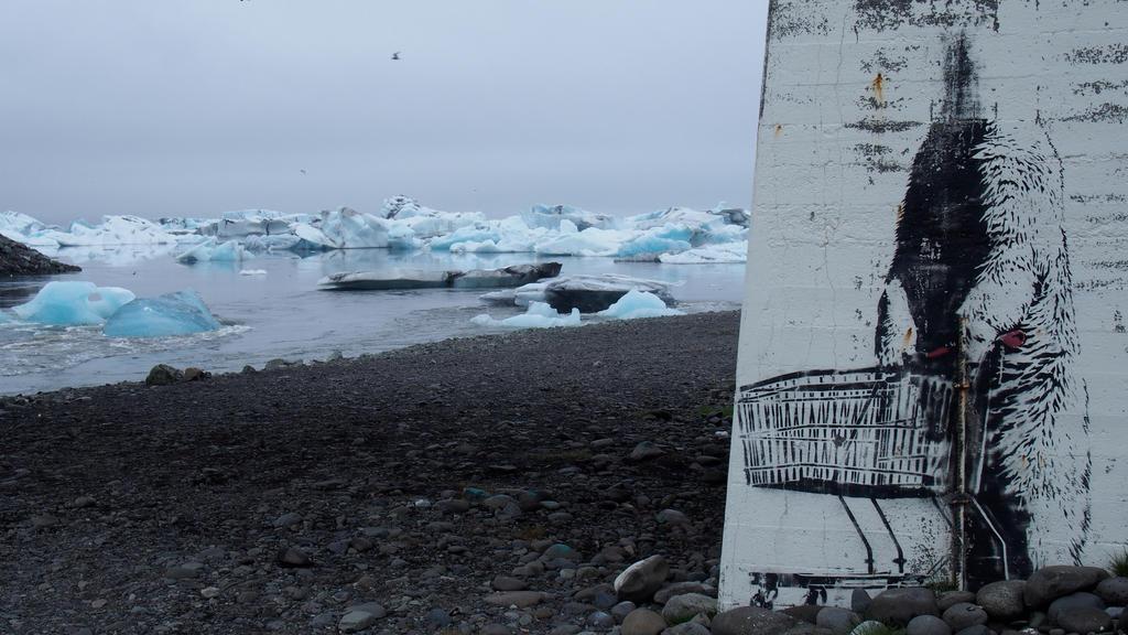 Icelandic Street Art by SteamBerry