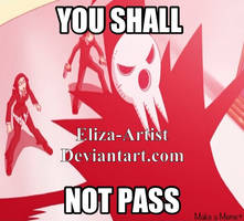 YOU SHALL NOT PASS by Eliza-Artist