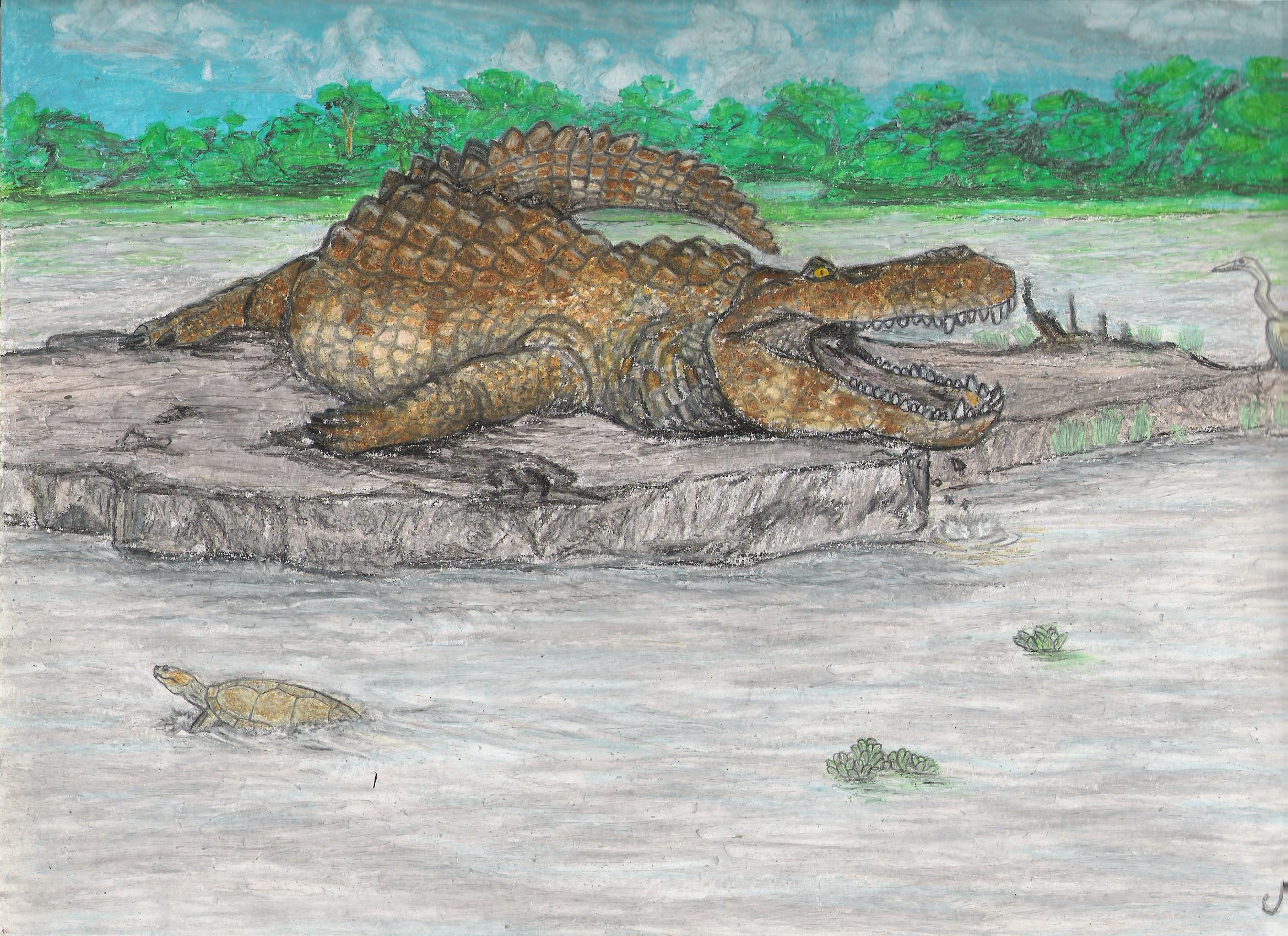 Purussaurus  giant Mio...