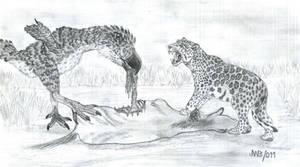 Titanis walleri and Panthera sp (2011).