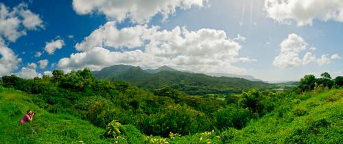 Hawaii Vista