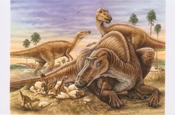 Maiasaura and nest