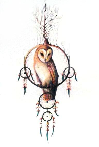 Owl dreamcatcher drawing - photo#22