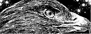 Eagle Sketch by Foosuke