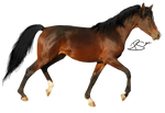 Precut Horse 1